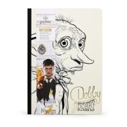 BANDAI Astray Red Frame Revise 1/100 MG GUNPLA GUNDAM MODEL KIT