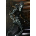 Hasbro Spider-Man Legends Series Spider-Woman